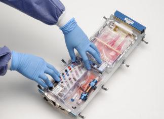 Photo of technician assembling cell-study equipment