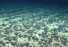 Photo of mineral deposits on the ocean floor