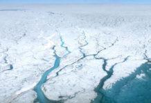 Photo of melting ice