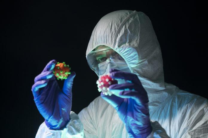 Photo of scientist holding virus models